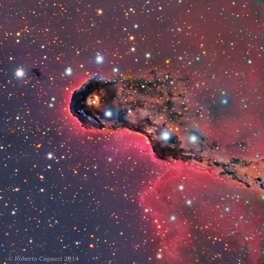 NGC 1396 Elephant's Trunk Nebula